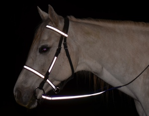 Reflective Day-Glo English bridle